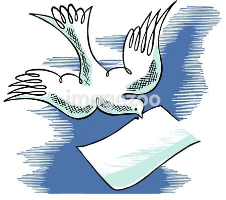 A white dove carrying a note