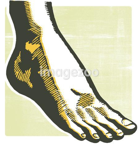 A vintage print of a foot