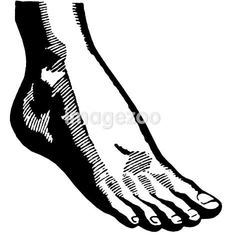 A black and white version of a vintage print of a foot