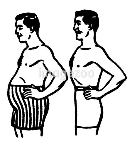 A comparison of body shapes