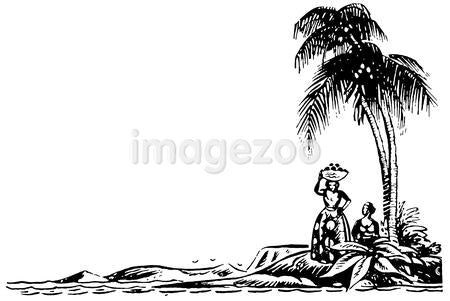 A black and white version of an illustration of Palm covered beaches