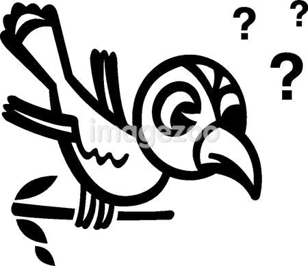 A black and white version of a bird sitting on a branch with question marks