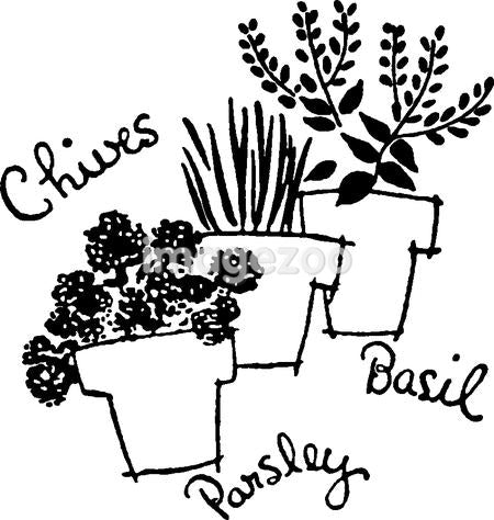 A black and white version of three pots of herbs