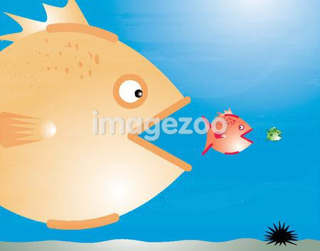 A big fish eating a small fish which is about to eat an even smaller fish