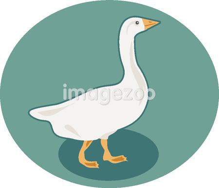 Illustration of a goose
