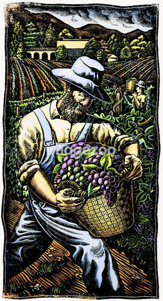 A farmer carrying a basket of grapes