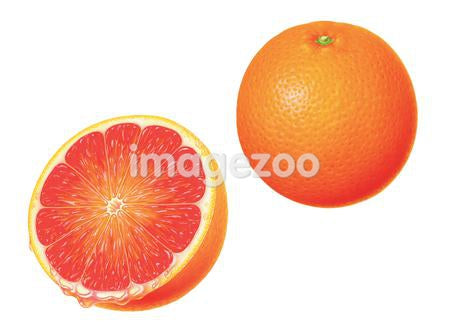 An illustration of an orange whole and halved