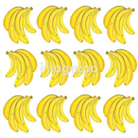 rows of banana bunches