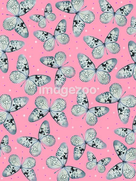 Butterflies on a pink background