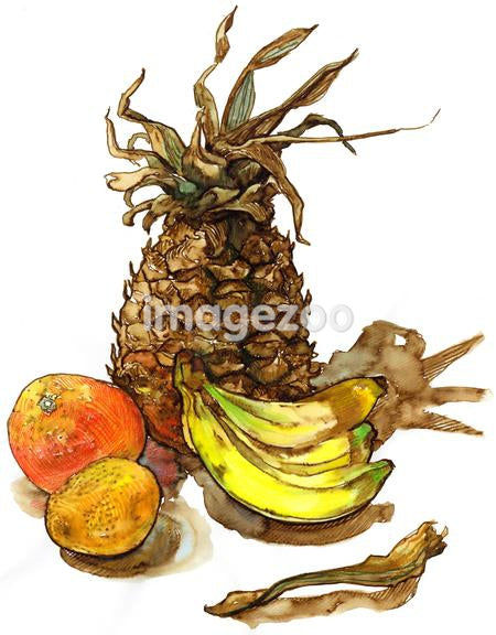 A watercolor painting of fruit