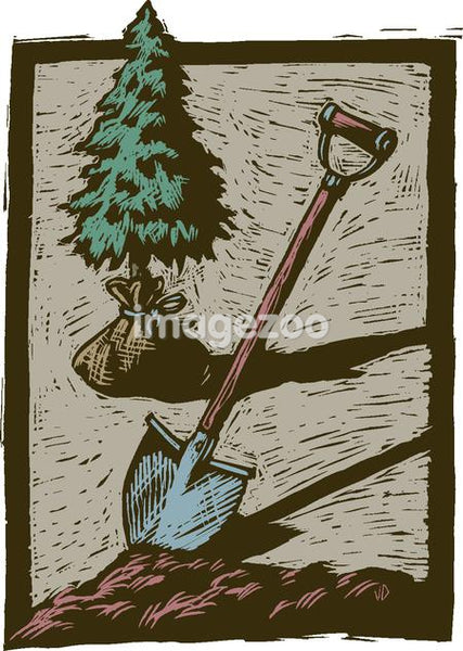 A tree being planted with a shovel and dirt in the foreground
