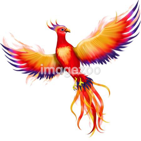 An illustration of a souring Phoenix