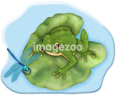 A frog ready to pounce on a passing dragonfly