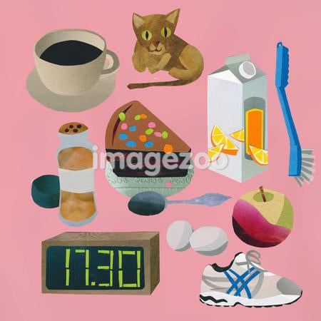 Various items including food, a cat, an alrm clock, a shoe, and a brush