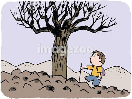 A boy hiking past a dead tree