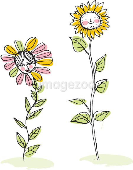 Two flowers against white background