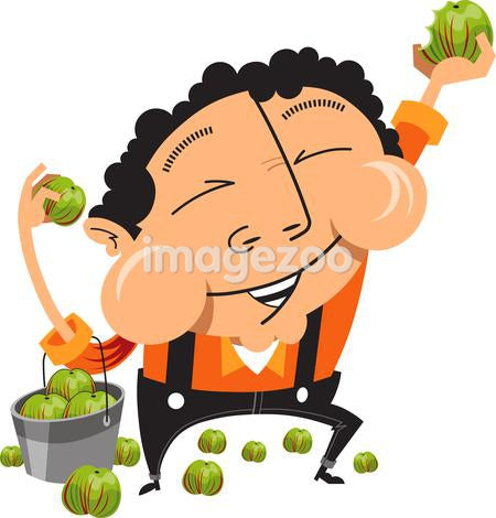 Man eating apples from a bucket