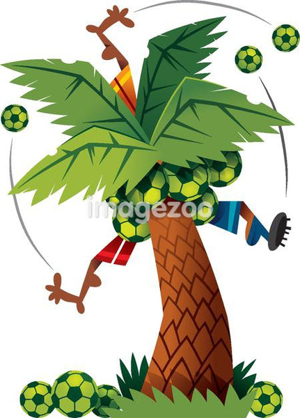 Soccer players trapped in a palm tree