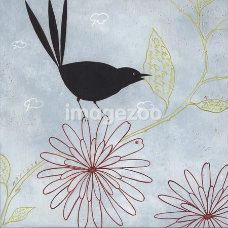 A black bird pulling a leaf from a flower