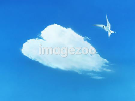 Bird flying in sky with heart shaped cloud