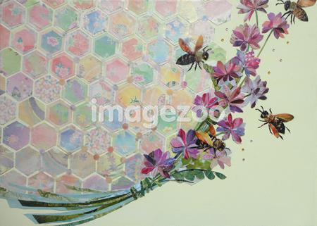 A flower and honeycomb collage