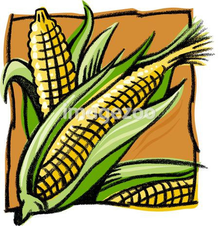 A drawing of corn