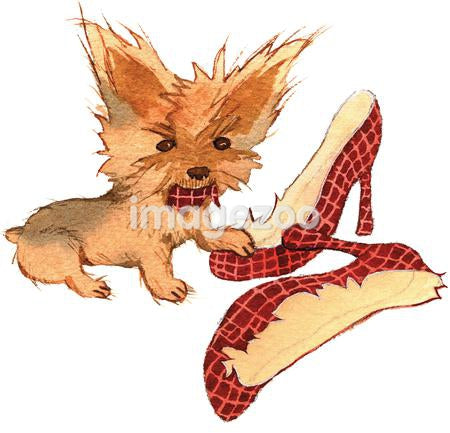 A watercolor painting of a small brown terrier biting a pair of shoes