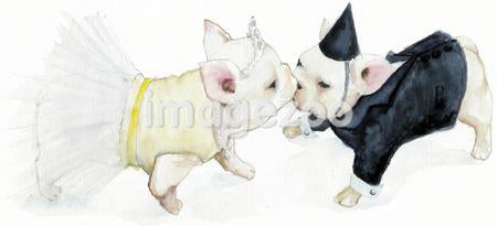 A watercolor painting of two white French Bulldogs kissing dressed in formal attire