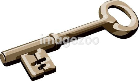 Illustration of a skeleton key