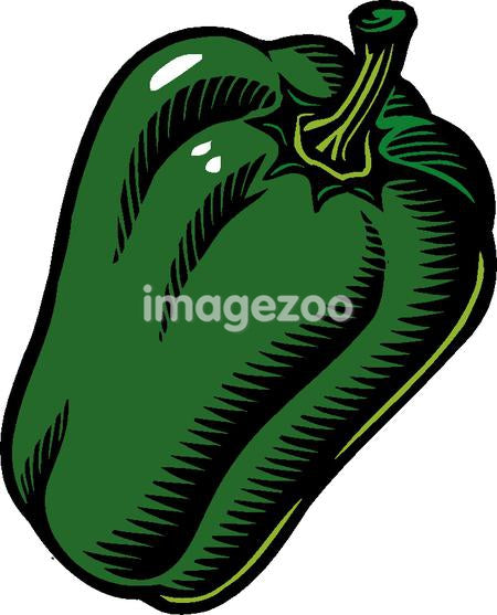 An illustration of a green pepper