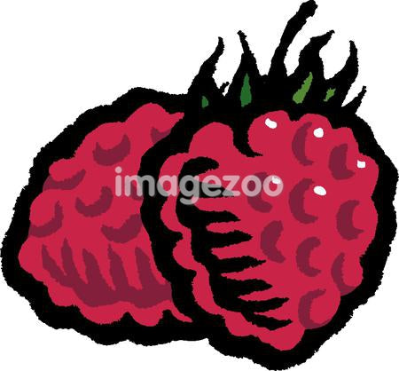 A picture of two red raspberries