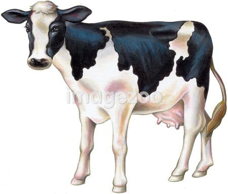 A painting of a cow