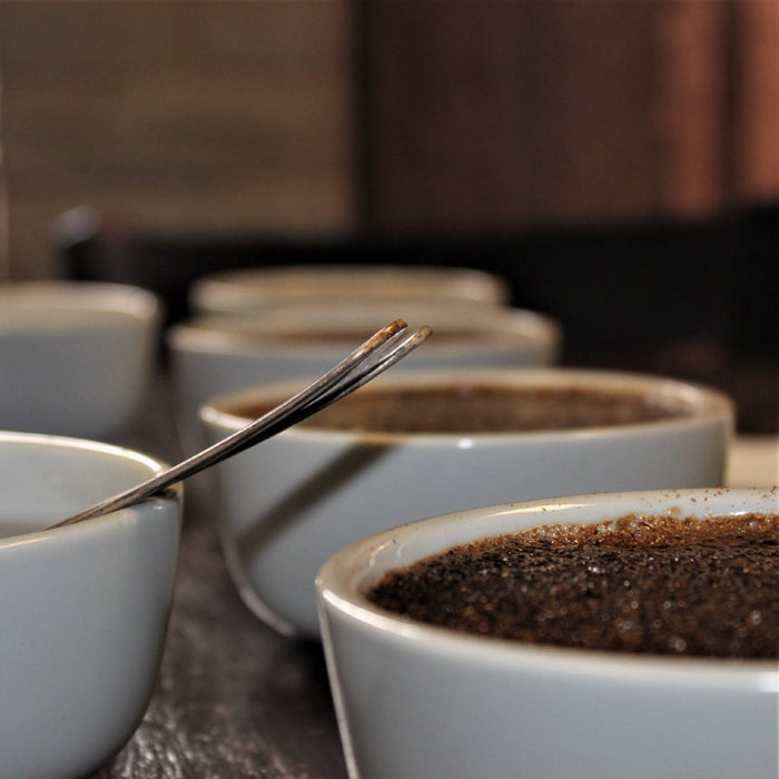 Feb 23rd - Cupping Class (1:30pm)