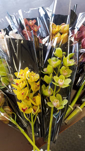 Half Mix Colour Cymbidium Box