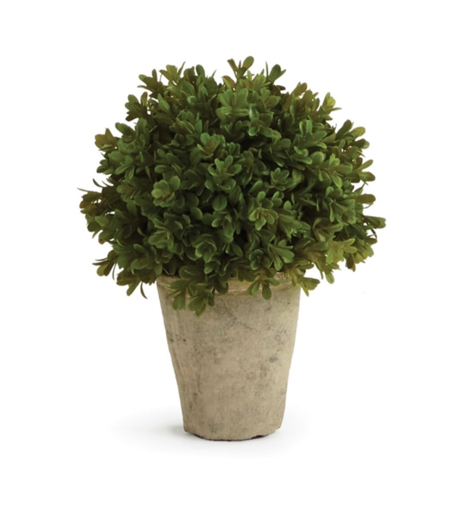 Faux Boxwood Shrubs Potted 9""