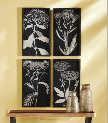 Monochrome Queen Anne's Lace Prints, Set Of 4