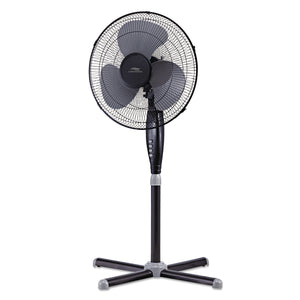 Hauz Living Oscillating Fan 16""