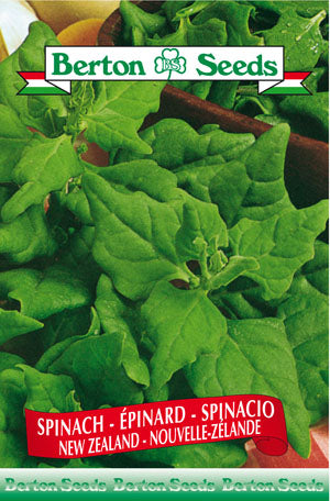 Berton seeds Spinach New Zealand