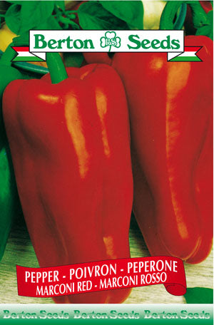 Berton seeds Pepper Marconi red