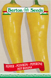 Berton seeds Pepper hot banana