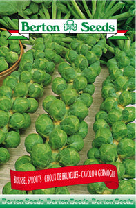 Berton Seeds Brussel Sprouts