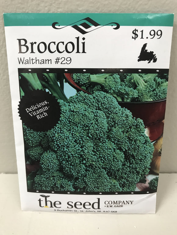 BROCCOLI WALTHAM #29 SEEDS
