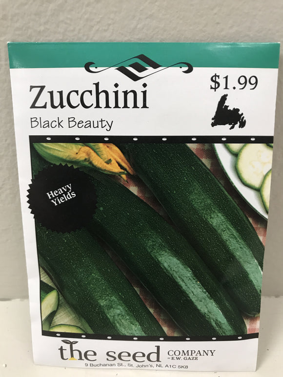 ZUCCHINI BLACK BEAUTY SEEDS