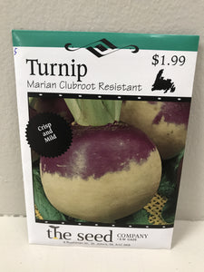 TURNIP MARIAN CLUBROOT RESISTANT SEEDS