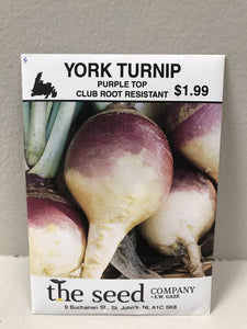 NEW YORK TURNIP PURPLE CLUB ROOT RESISTANT