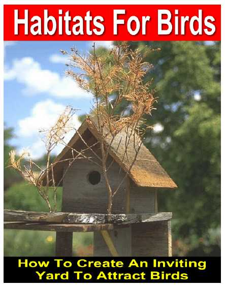 Habitats For Birds - How To Create An Inviting Yard To Attract Birds - PDF eBook Only 1.95 USD