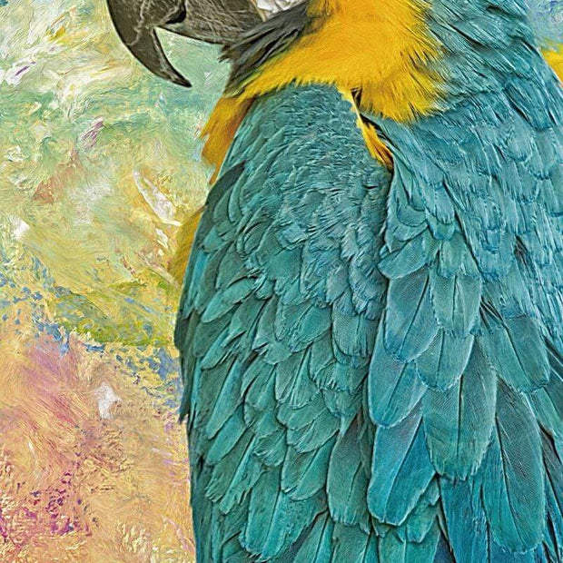 Blue & Yellow Macaw Parrot Canvas Canvas