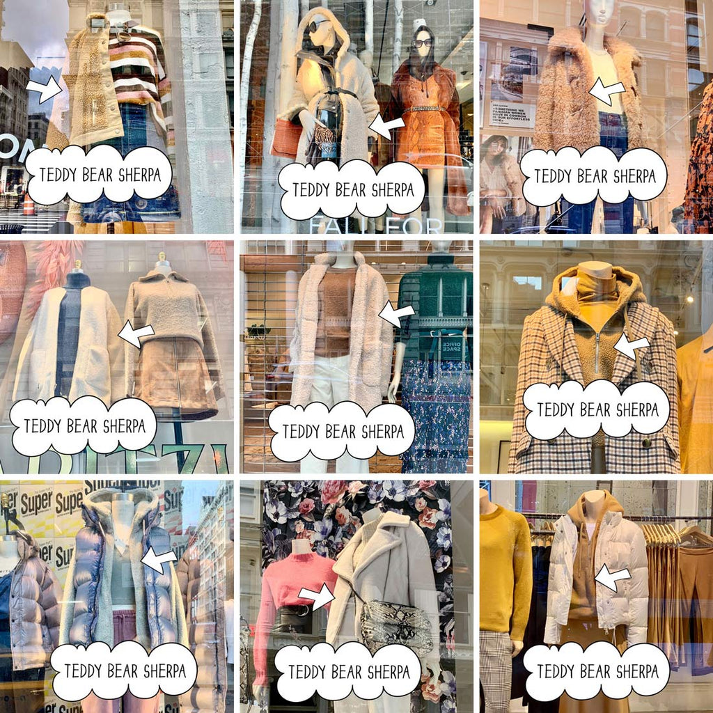 Teddy Bear Sherpa Window Shopping