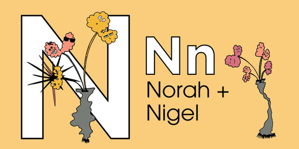 The MoMeMans® ZYX Project: Alliterative Tales from Z to A. Letter N: Norah + Nigel by Monica Escobar Allen. Learning the ABCs for Babies and Tots.