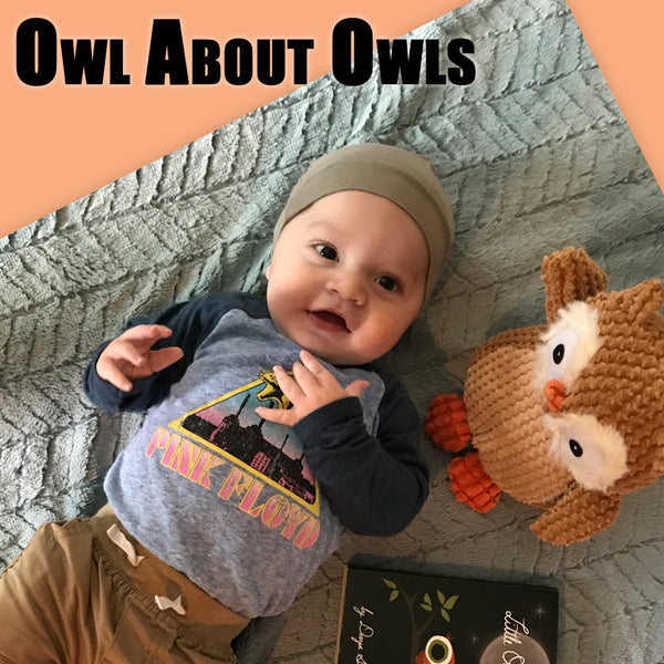 Little Owl's Night Gift Set